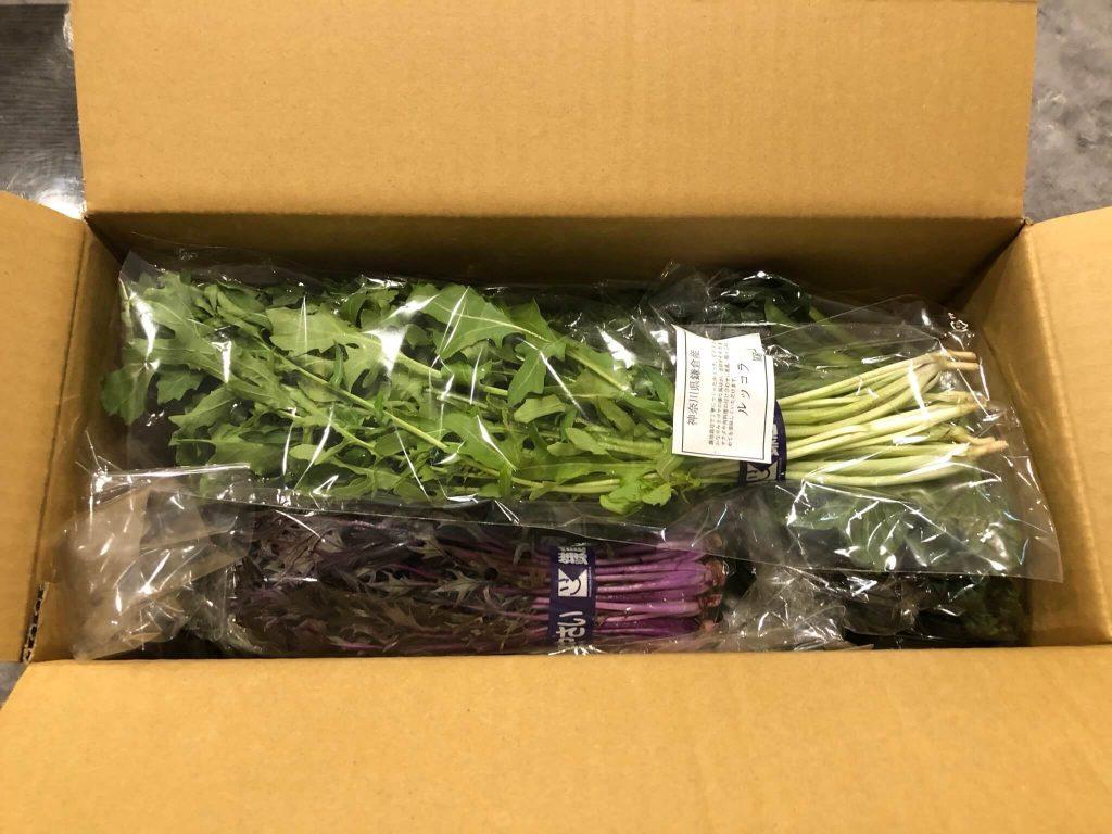 鎌倉直産野菜宅配「かまベジ」のお試しセットを注文14