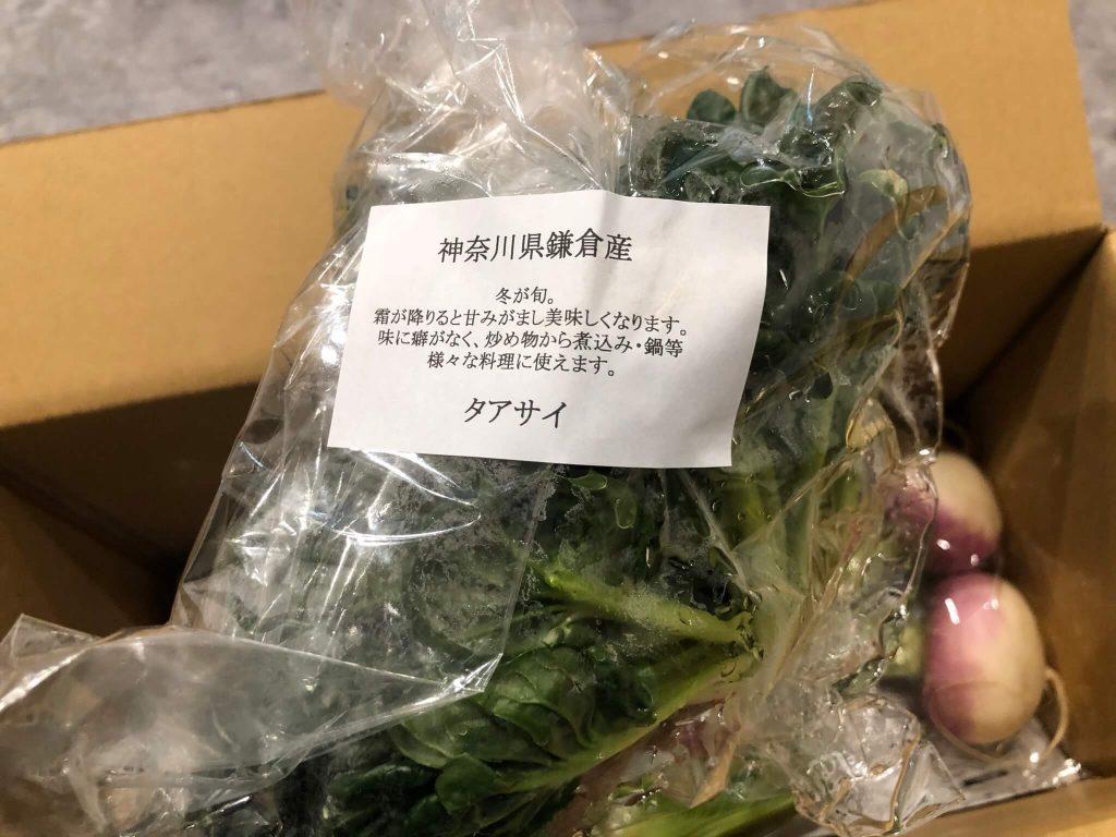 鎌倉直産野菜宅配「かまベジ」のお試しセットを注文21