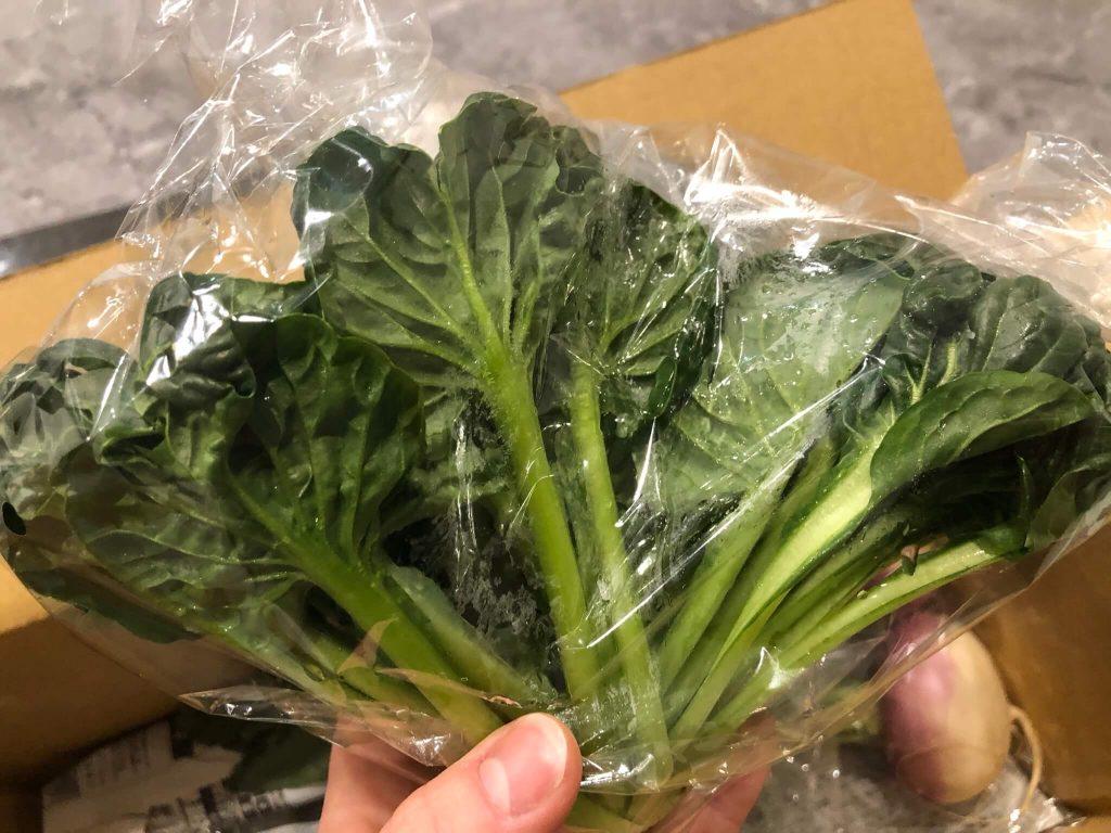 鎌倉直産野菜宅配「かまベジ」のお試しセットを注文22