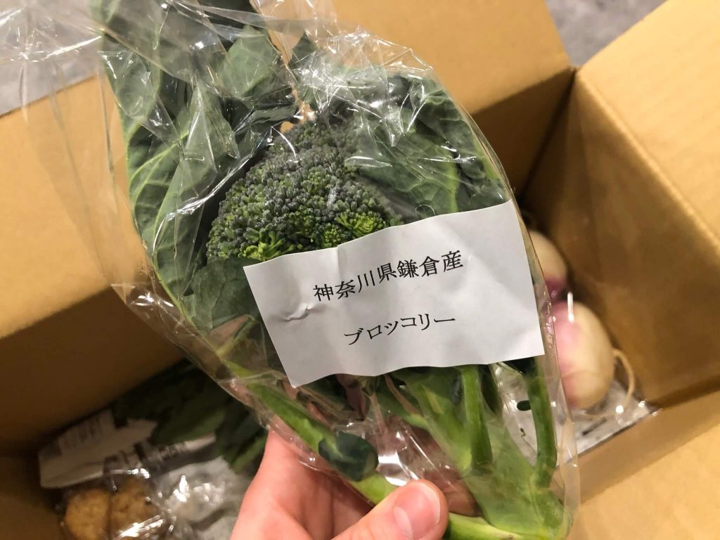 鎌倉直産野菜宅配「かまベジ」のお試しセットを注文23