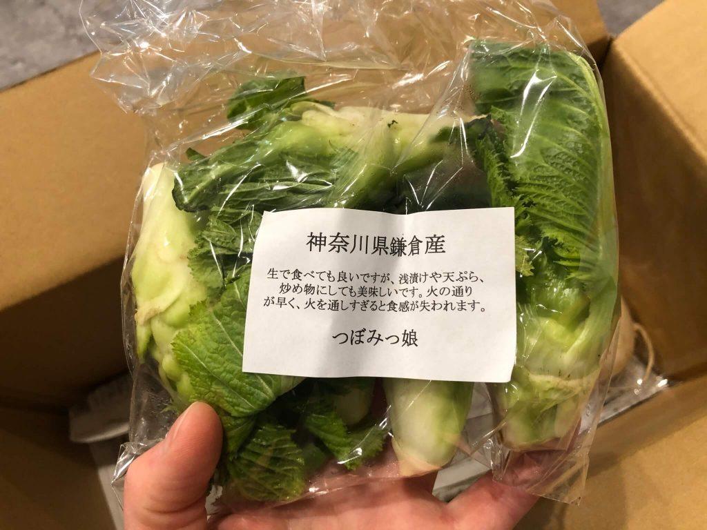 鎌倉直産野菜宅配「かまベジ」のお試しセットを注文26