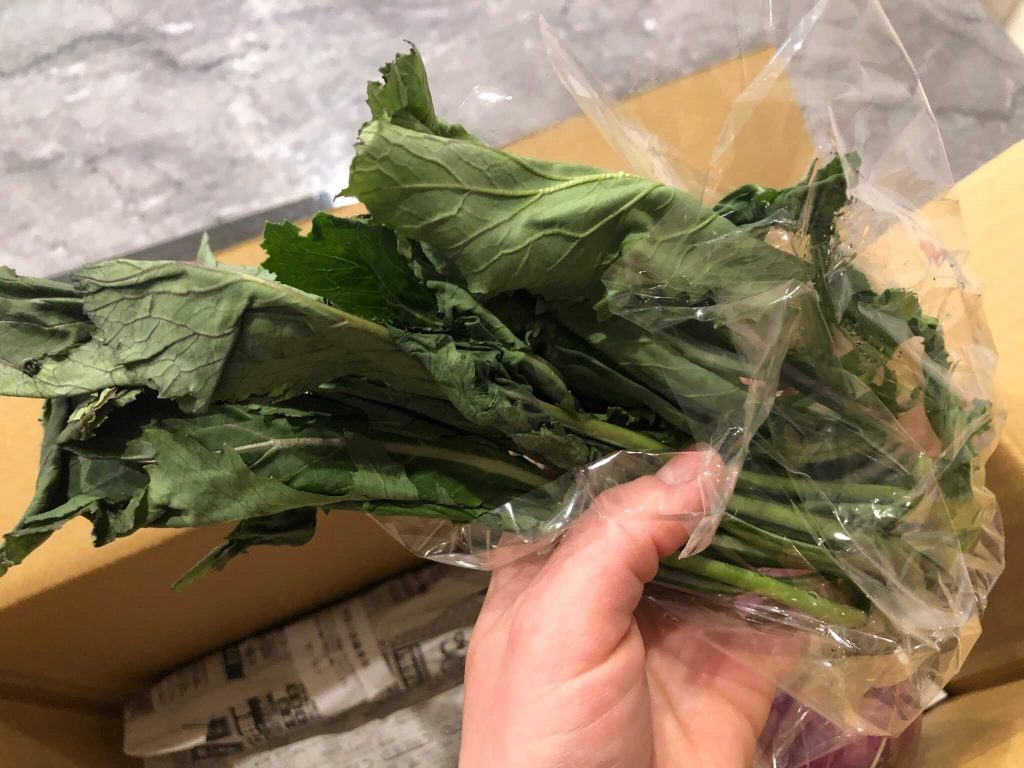 鎌倉直産野菜宅配「かまベジ」のお試しセットを注文28
