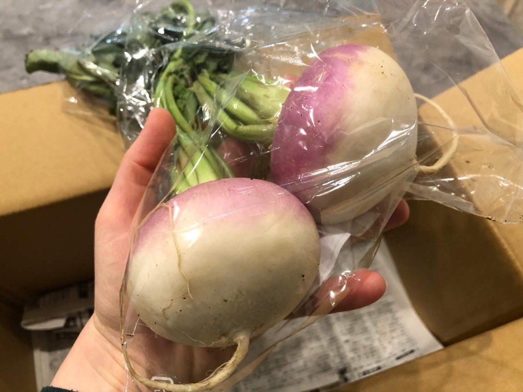 鎌倉直産野菜宅配「かまベジ」のお試しセットを注文30
