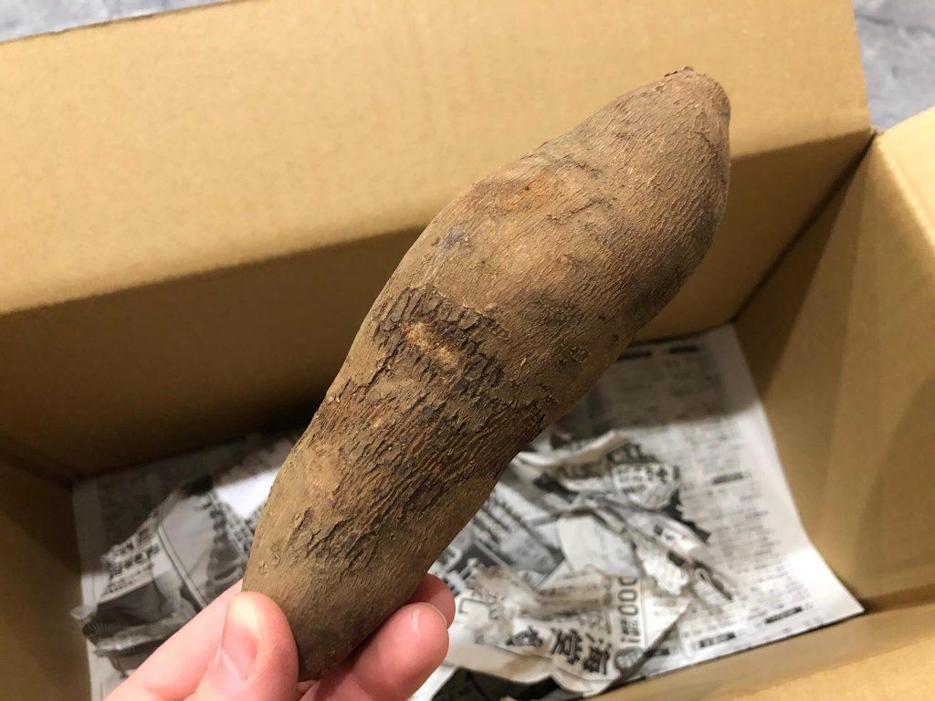 鎌倉直産野菜宅配「かまベジ」のお試しセットを注文32