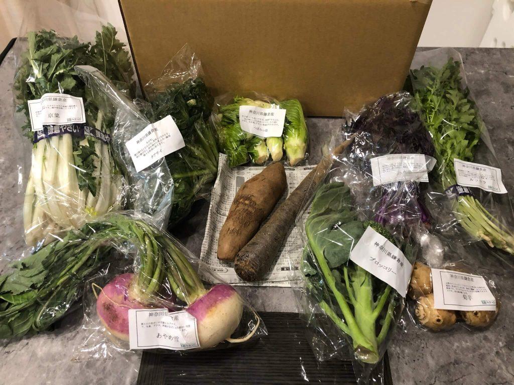 鎌倉直産野菜宅配「かまベジ」のお試しセットを注文34