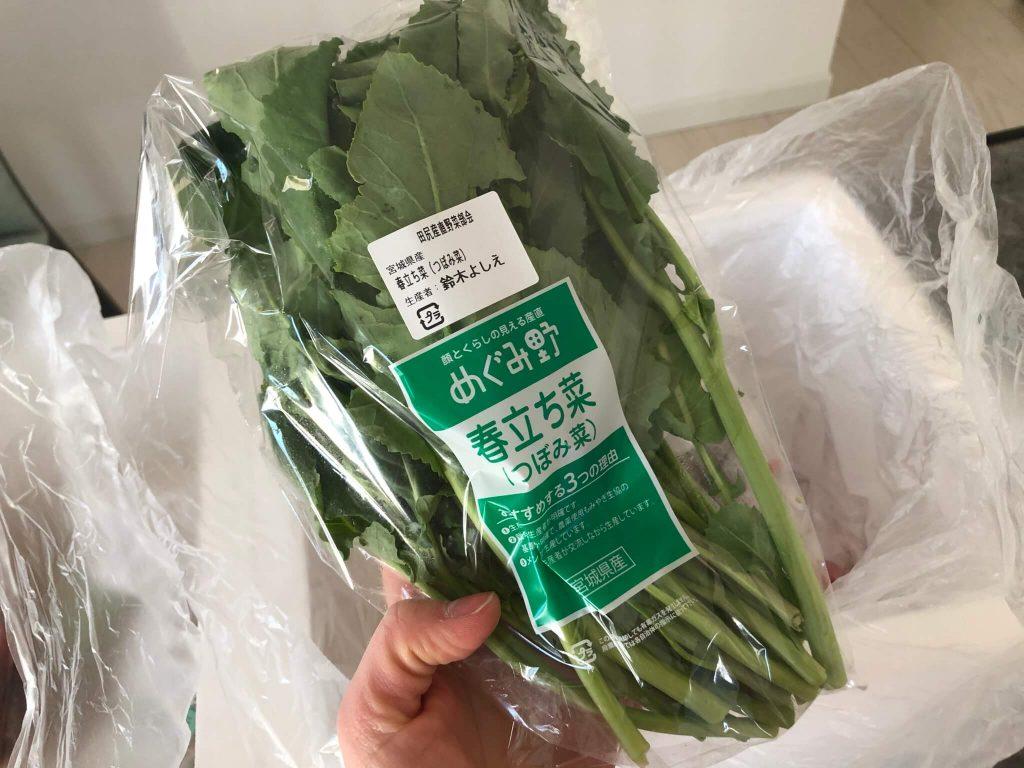野菜ソムリエがコープ東北の食材宅配サービスを利用31