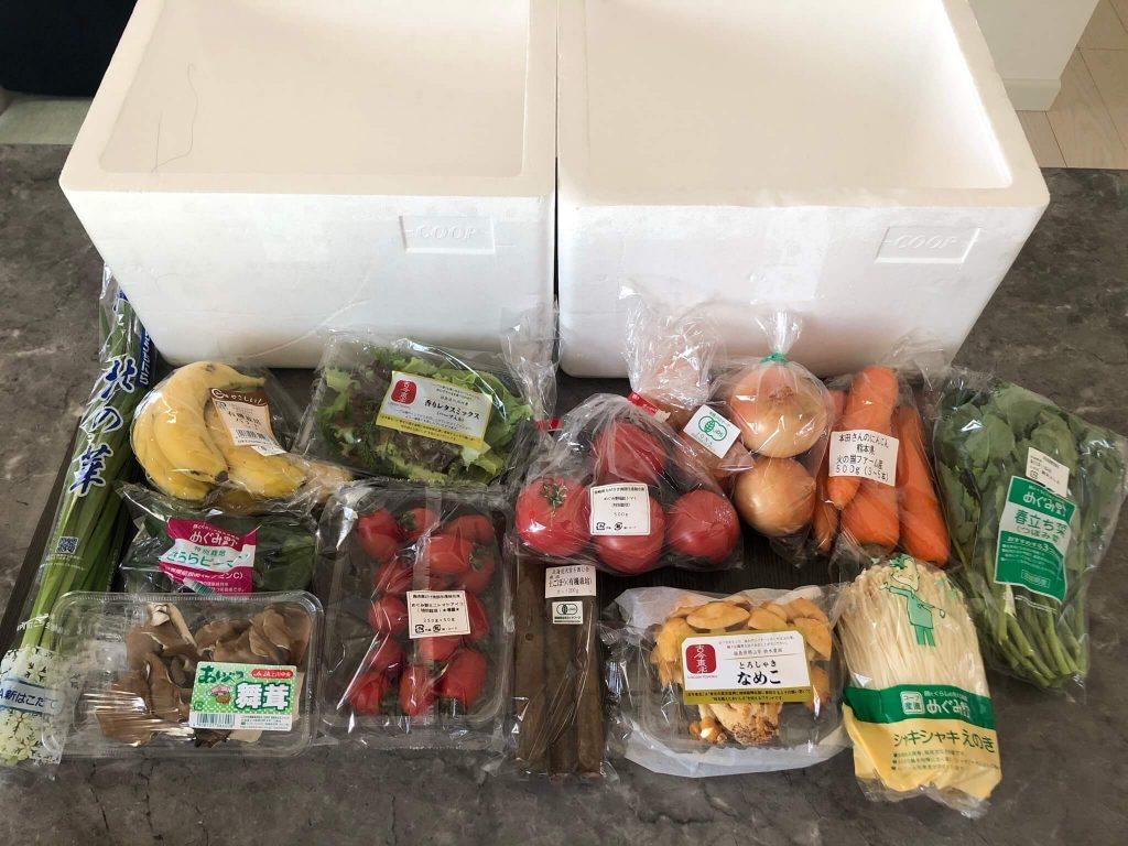 野菜ソムリエがコープ東北の食材宅配サービスを利用57