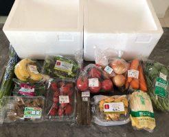 野菜ソムリエがコープ東北の食材宅配サービスを利用45