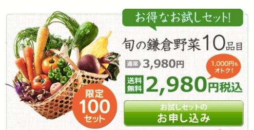 鎌倉直産野菜宅配「かまベジ」のお試しセットを注文2
