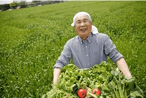 鎌倉直産野菜宅配「かまベジ」のお試しセットを注文5