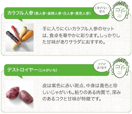 鎌倉直産野菜宅配「かまベジ」のお試しセットを注文7