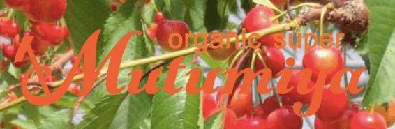 むつみ屋の有機野菜・自然食品通販サービスの有機野菜セットをお試し1