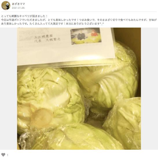 茨城県産自然栽培野菜セットをお試し・おお槻農園@百笑懸命3
