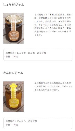 綾・早川農苑の無農薬野菜セットを注文10