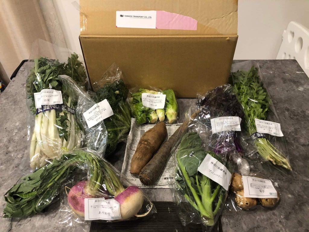 鎌倉直産野菜宅配「かまベジ」のお試しセットを注文45
