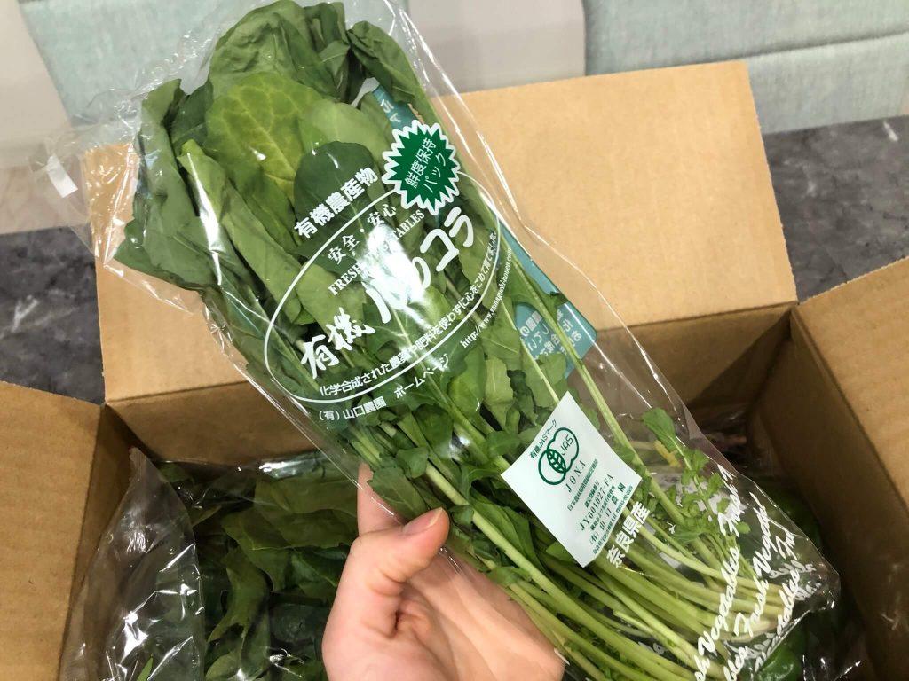 むつみ屋の有機野菜・自然食品通販サービスの有機野菜セットをお試し34