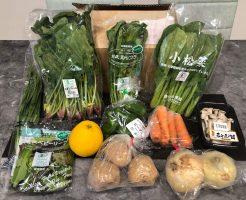 むつみ屋の有機野菜・自然食品通販サービスの有機野菜セットをお試し47