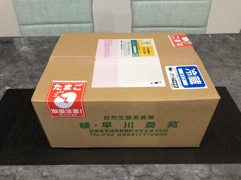 綾・早川農苑の無農薬野菜セットを注文15