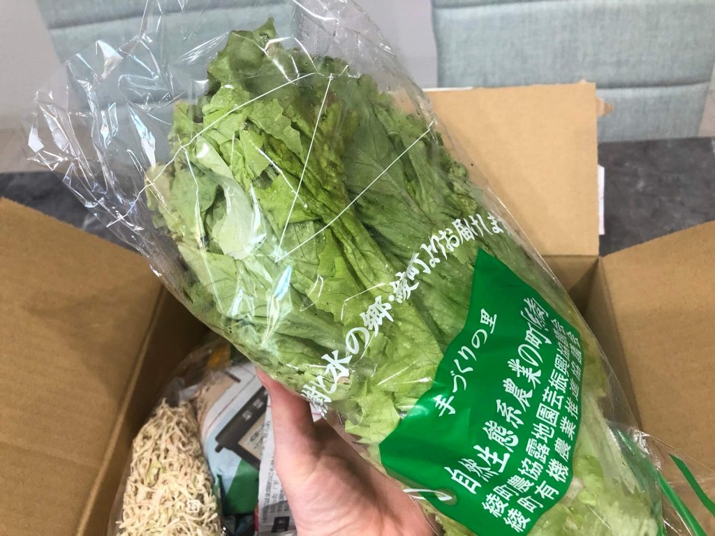 綾・早川農苑の無農薬野菜セットを注文20