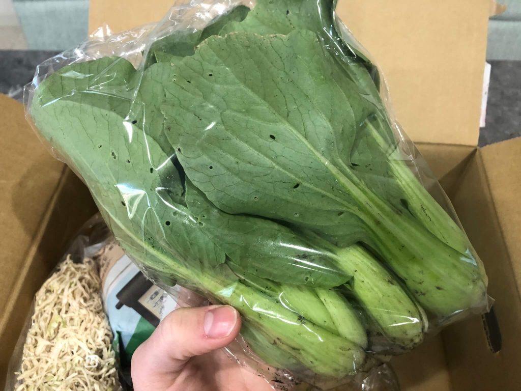 綾・早川農苑の無農薬野菜セットを注文22