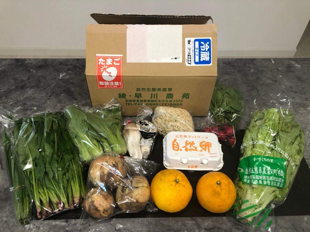 綾・早川農苑の無農薬野菜セットを注文31