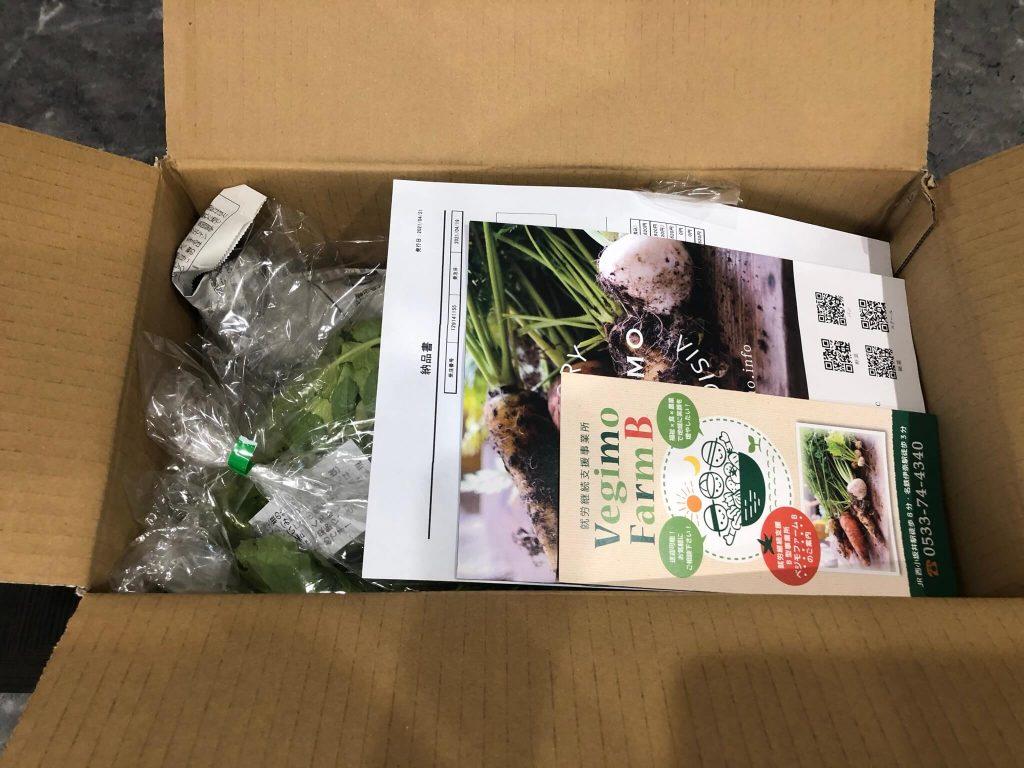 あなた専用個人農家・自然栽培野菜の宅配「ベジモ」のお試しセットの口コミ2