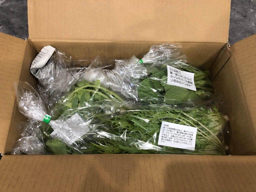 あなた専用個人農家・自然栽培野菜の宅配「ベジモ」のお試しセットの口コミ4