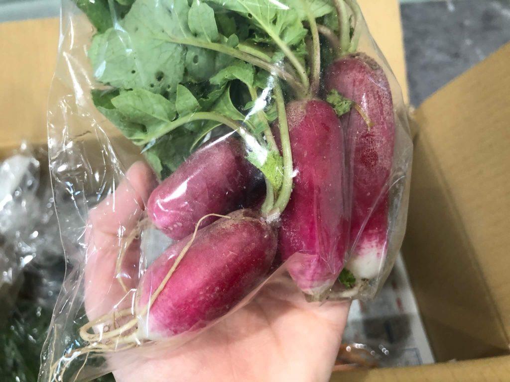 あなた専用個人農家・自然栽培野菜の宅配「ベジモ」のお試しセットの口コミ11