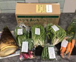 あなた専用個人農家・自然栽培野菜の宅配「ベジモ」のお試しセットの口コミ19