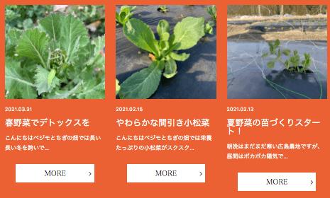 あなた専用個人農家・自然栽培野菜の宅配「ベジモ」のお試しセットの口コミ31