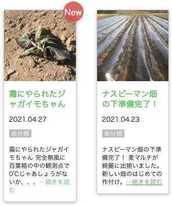 茨城県産の無農薬・有機野菜の宅配「コトコトファーム」の野菜セットの口コミ3