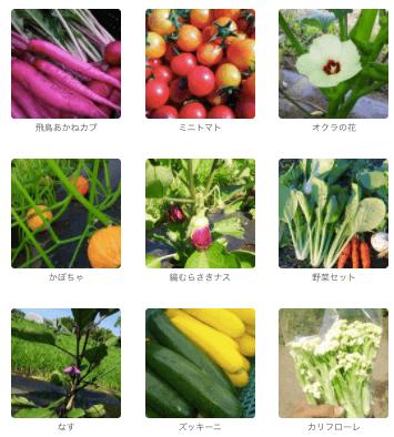 茨城県産の無農薬・有機野菜の宅配「コトコトファーム」の野菜セットの口コミ4