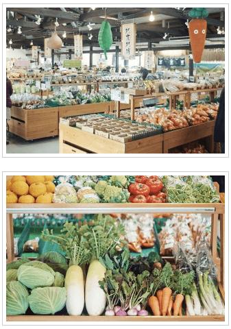 愛知県・長久手市の直売所と野菜宅配の「あぐりん村」の感想と口コミ5