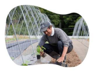 茨城県産の無農薬・有機野菜の宅配「コトコトファーム」の野菜セットの口コミ8