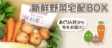 愛知県・長久手市の直売所と野菜宅配の「あぐりん村」の感想と口コミ4