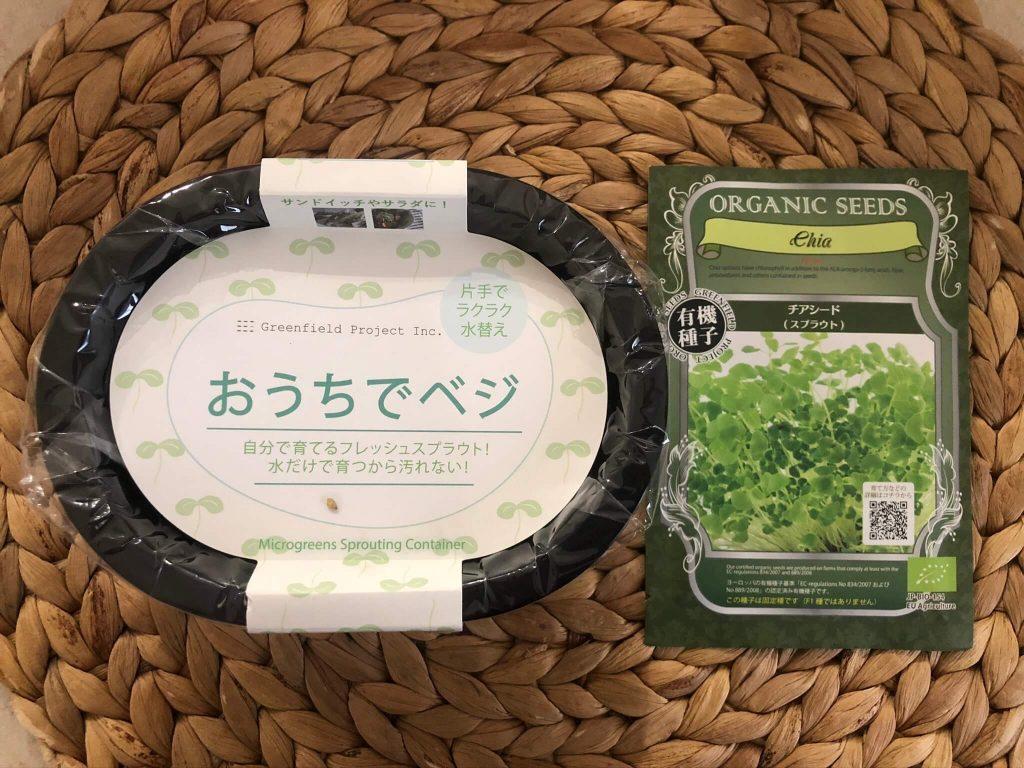 スーパーフード・チアシードスプラウトの栽培日記6