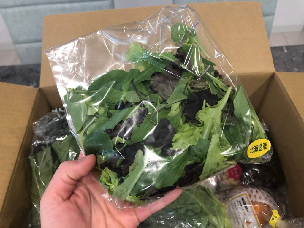 【口コミ・評判】青果日和の野菜のお試しセット25
