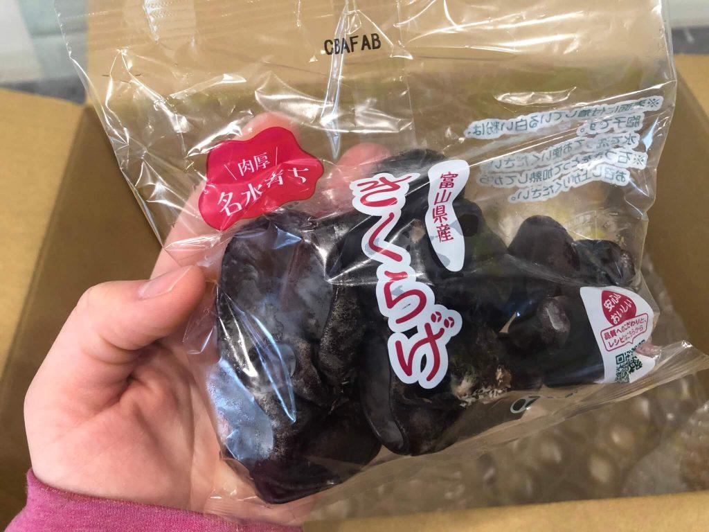 【口コミ・評判】青果日和の野菜のお試しセット38