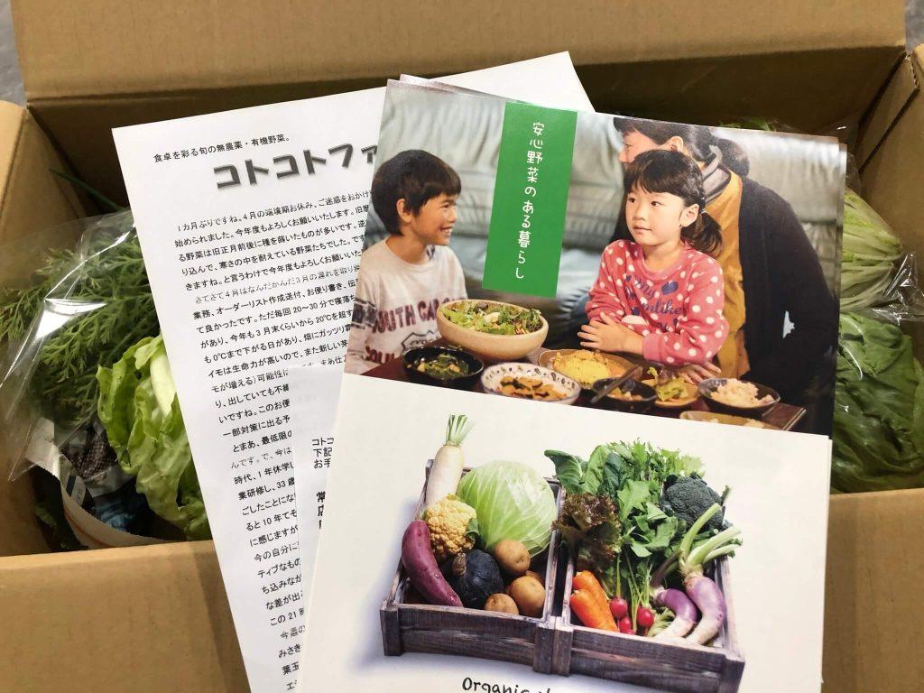 茨城県産の無農薬・有機野菜の宅配「コトコトファーム」の野菜セットの口コミ13