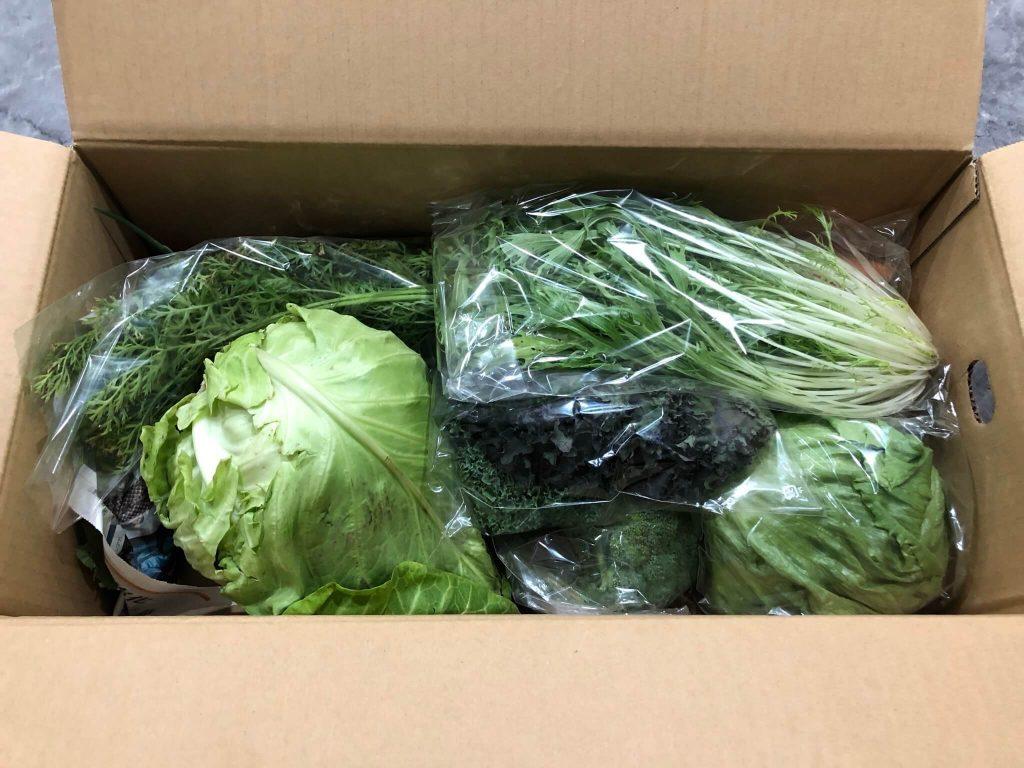 茨城県産の無農薬・有機野菜の宅配「コトコトファーム」の野菜セットの口コミ14