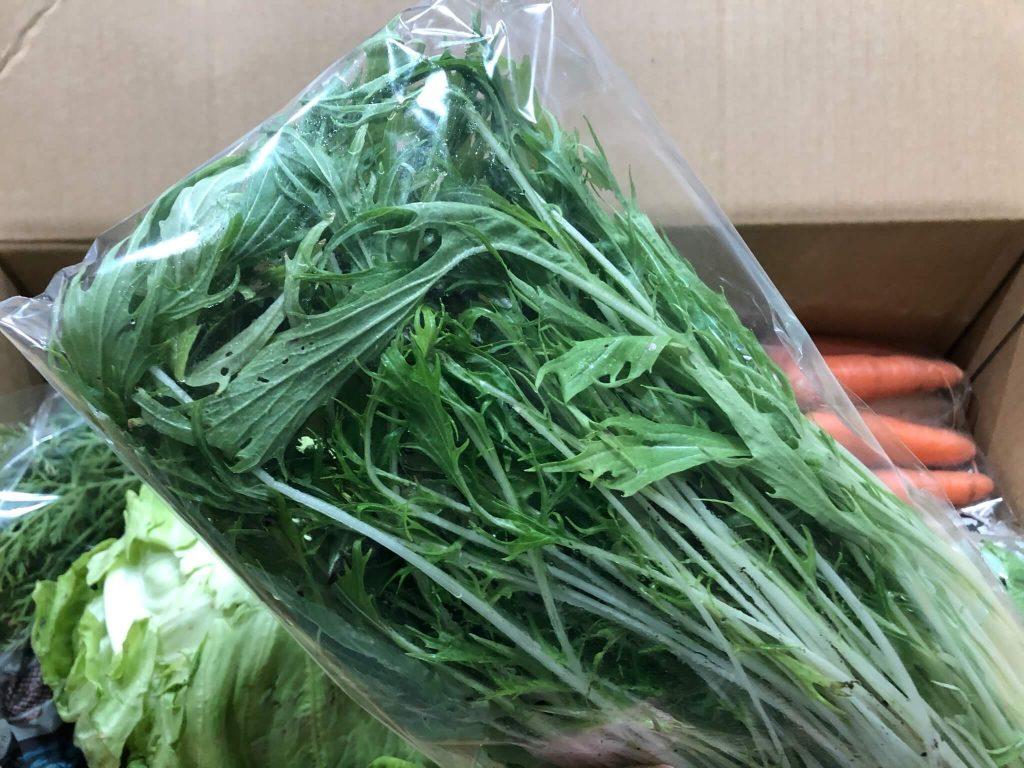 茨城県産の無農薬・有機野菜の宅配「コトコトファーム」の野菜セットの口コミ16