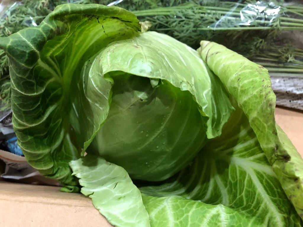 茨城県産の無農薬・有機野菜の宅配「コトコトファーム」の野菜セットの口コミ23