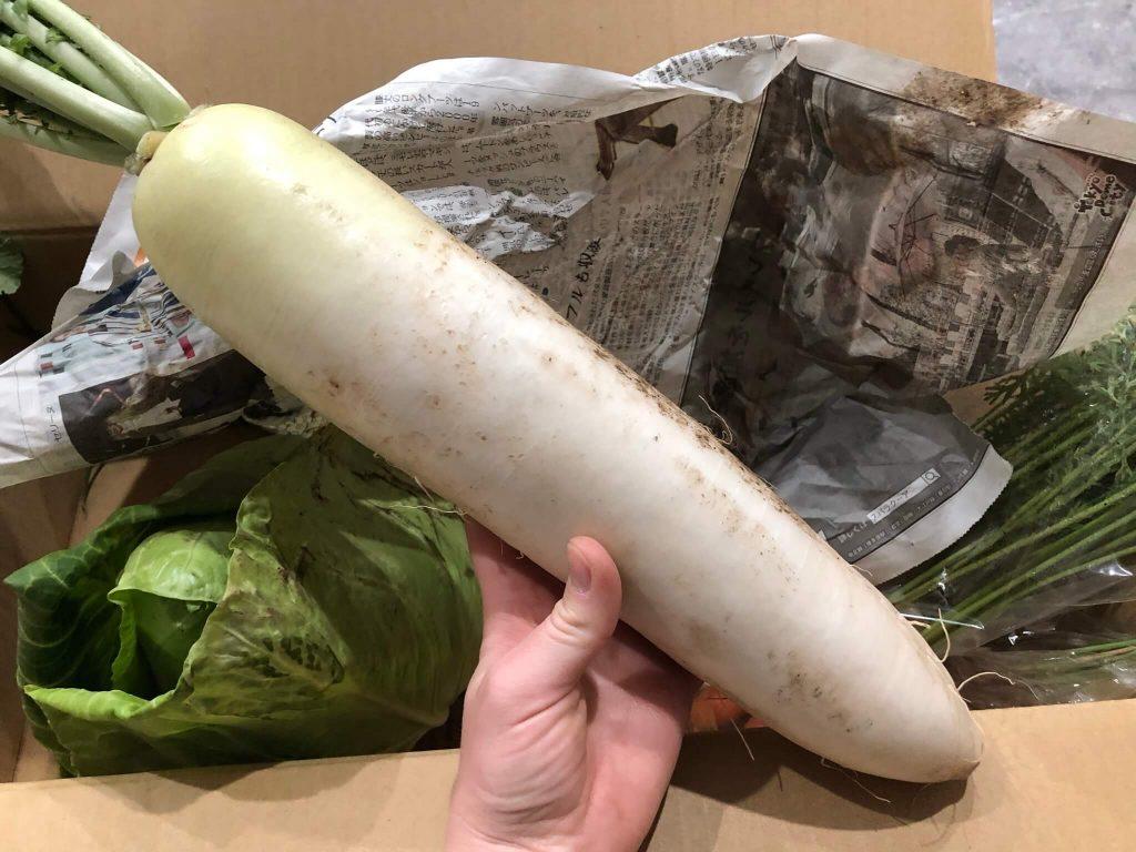 茨城県産の無農薬・有機野菜の宅配「コトコトファーム」の野菜セットの口コミ25