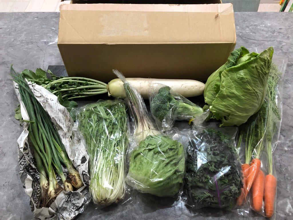 茨城県産の無農薬・有機野菜の宅配「コトコトファーム」の野菜セットの口コミ29