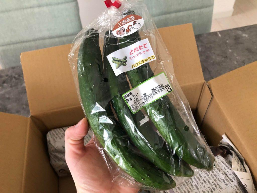 愛知県・長久手市の直売所と野菜宅配の「あぐりん村」の感想と口コミ11