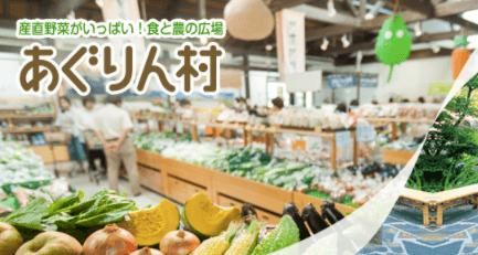 愛知県・長久手市の直売所と野菜宅配の「あぐりん村」の感想と口コミ3