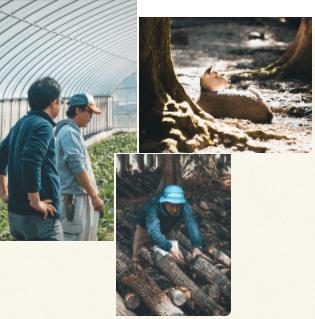 奈良の化学肥料・化学農薬不使用野菜宅配サービス「さん・らいふ」の口コミと評判3