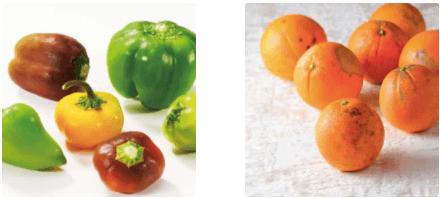 有機野菜宅配らでぃっしゅぼーやの不揃い野菜&食材セットのお試し・口コミ13