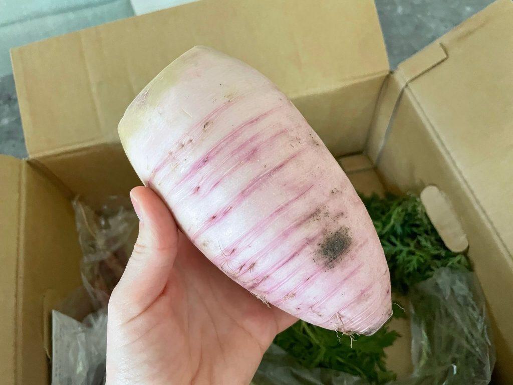 三浦野菜市場のお試し・他社の野菜宅配との比較と口コミ15