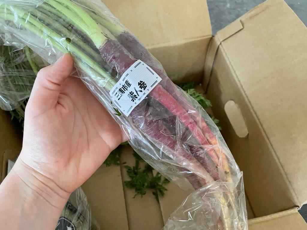 三浦野菜市場のお試し・他社の野菜宅配との比較と口コミ16